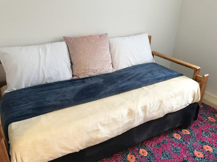 Quiet, clean, & sunny home in West Davis (Room 2)