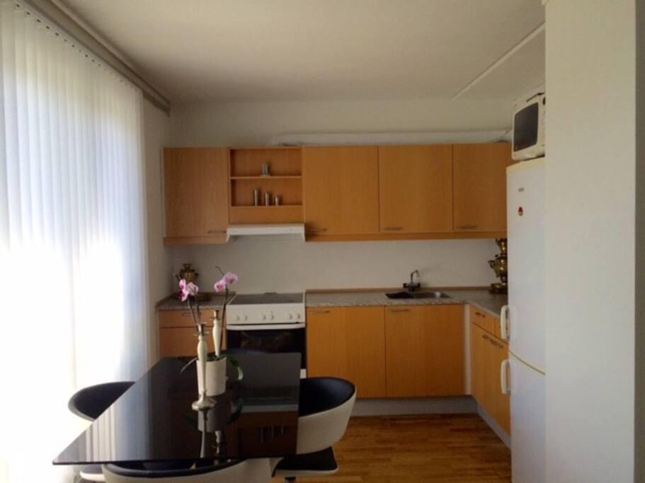 Hyggelig lejlighed tæt på Ølby station - Lejligheder til leje i Køge, Danmark