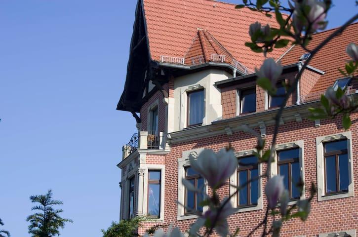 Magnolienblüte im Park mit Blick auf den kleinen Balkon der Fewo