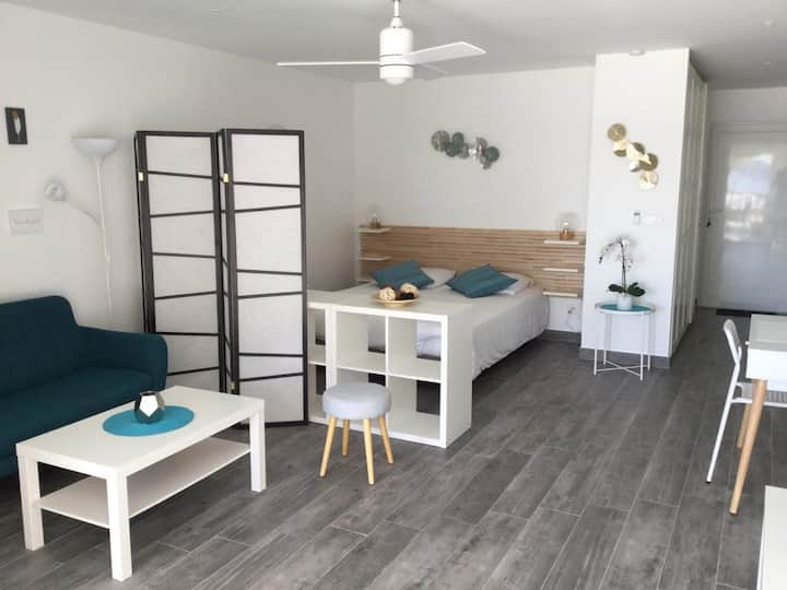 Appartement des Palmiers 2 Baie Nettlé