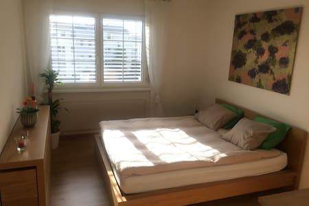 Private Room and WC in a cozy Apartment - Wallisellen - Bed & Breakfast