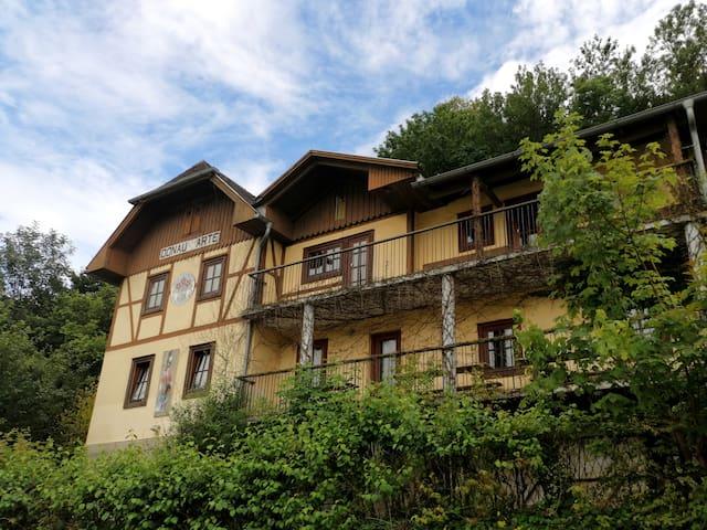 Donauarte - Eine Woche an der Donauriviera