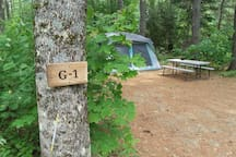 Glamping at Stonecrop - a tranquil woodsy retreat