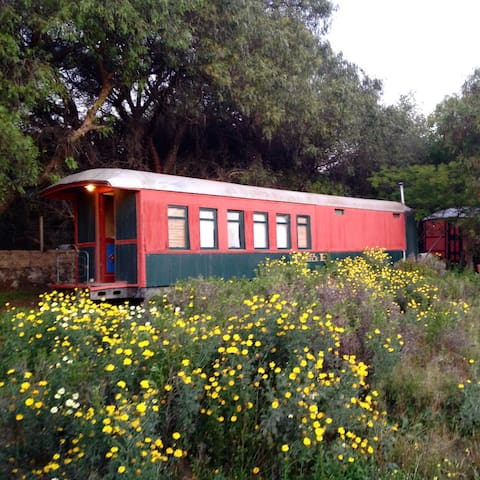 Homy, beautiful restored train in Valle de Elqui.