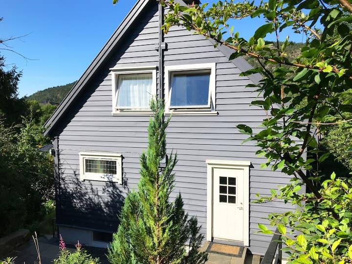 sunny Norwegian house