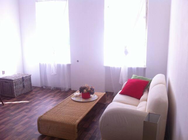Typische wiener Altbaugaconier - Wien - Apartment