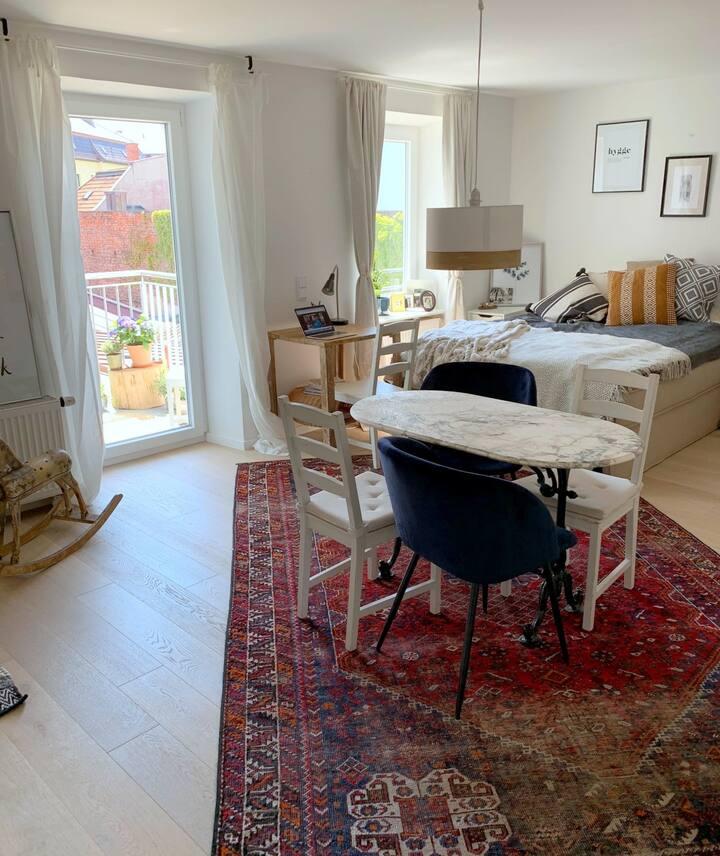 1 Bedroom Apt. near Isar