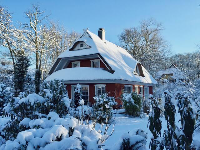 Modernes, gemütliches Ferienhaus in Strandnähe