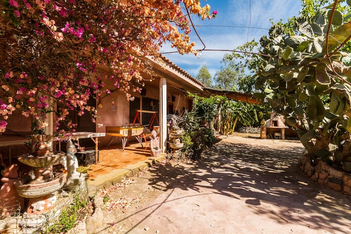 Sa Rosada 1 - San Priamo - Haus