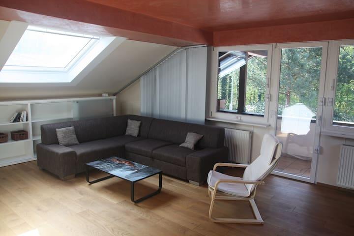 Wohnzimmer + Balkon -  Livingroom + balcony