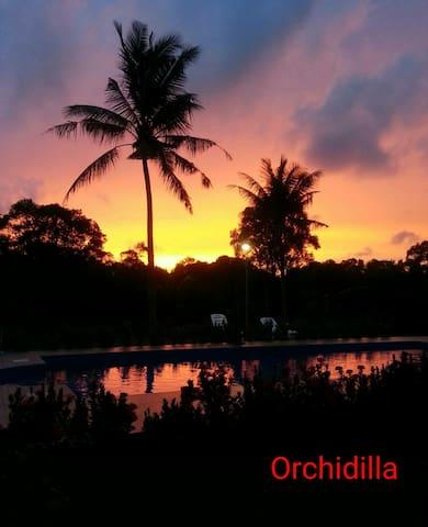 Phuket Airport Orchidilla House 17 - Mai Khao - Hus