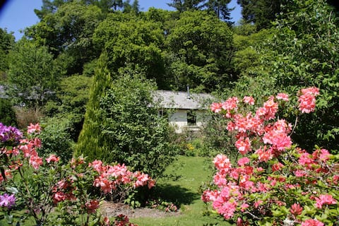 Woodpecker Cottage at Cwm Irfon Lodge
