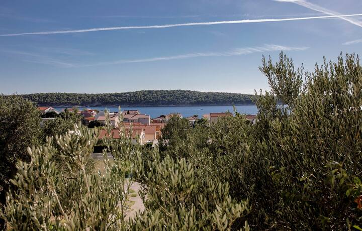 Apartments Opsenica / One bedroom Apartment Zdenka A1 with Sea View