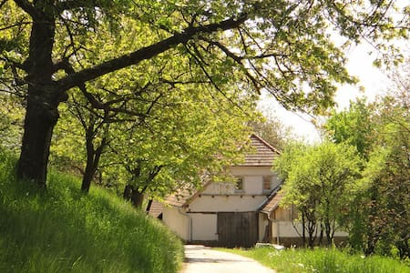 Spacious holiday lodge with fruit tree orchard - Brestovec - Casa