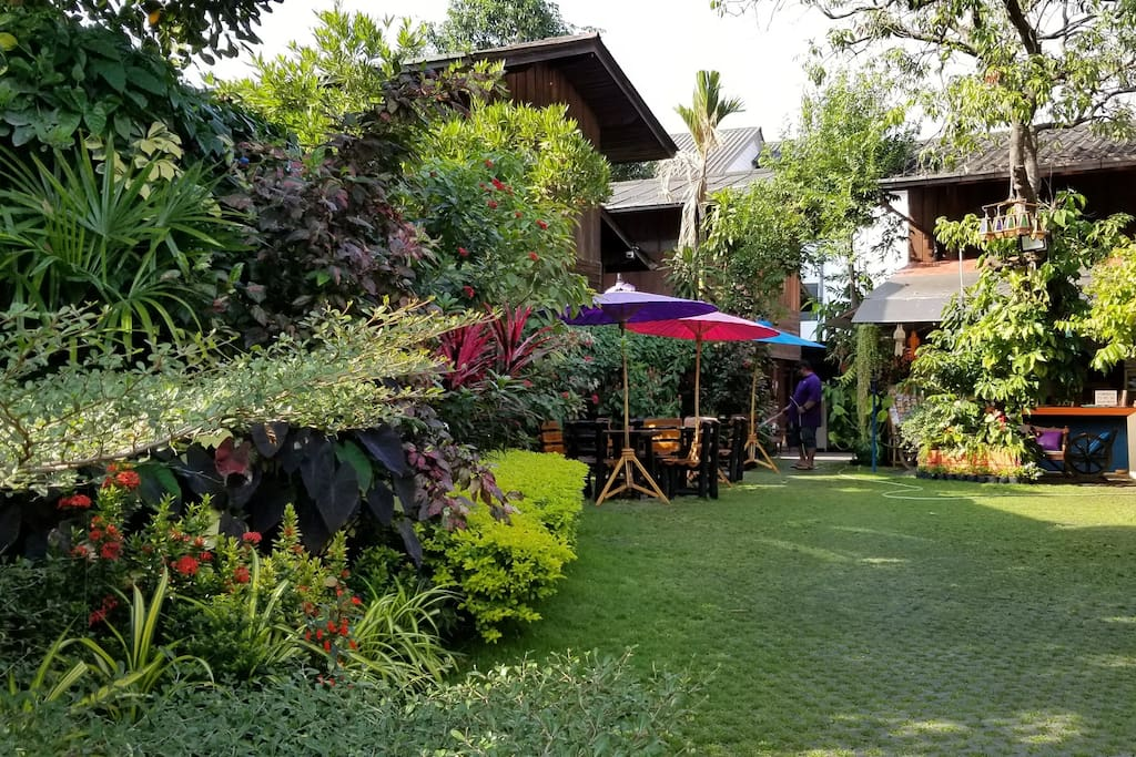 A cozy garden in the middle of Chiang Mai city