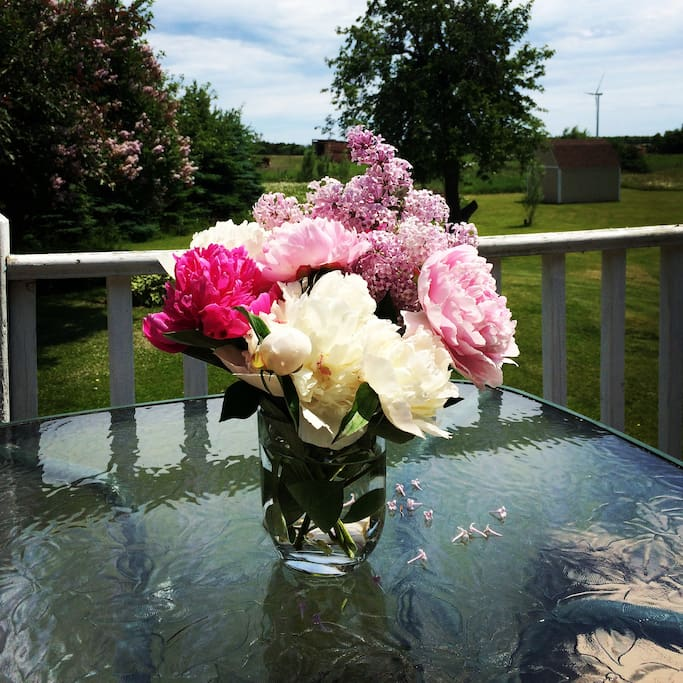 Peonies and lilacs are old-fashioned June favorites.