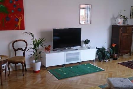 Två bädds rum i stor lägenhet - Apartment