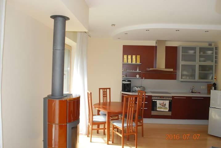 Ирена - Druskininkai - Appartement