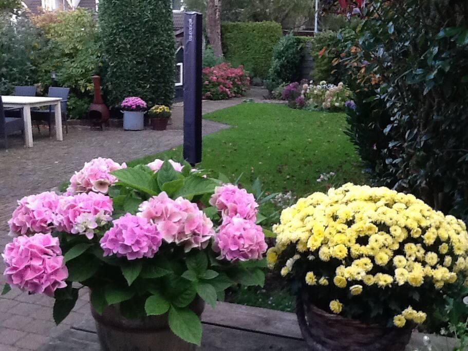 mooie ruime tuin met voldoende privacy en tuinmeubels