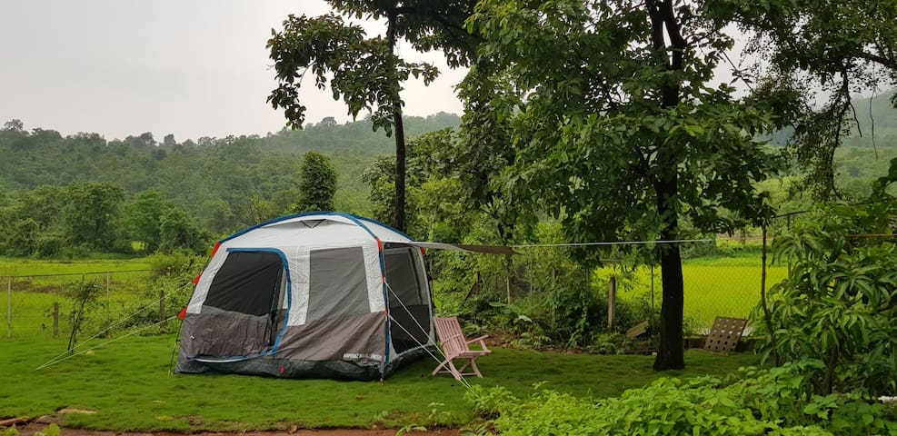 Mountain Goat - Campsite