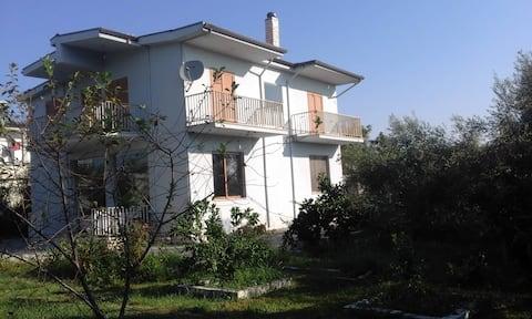Krutje Poshteme/ Lushnje/Albania