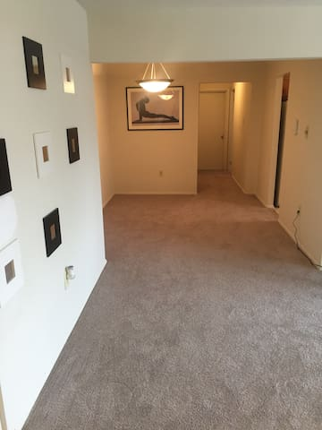 Spacious living area in downtown Frederick