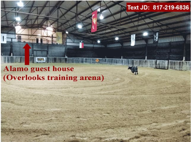 """NEW - The """"Alamo"""" Guest House and Horse Facility - Fort Worth - House"""