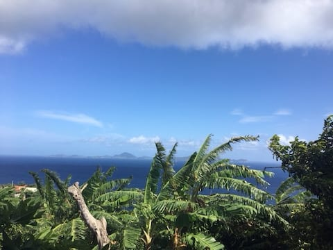 Studio sur les flancs des Monts Caraïbes