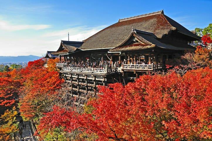 清水寺 近い 白い部屋.全貌の景色!女子カップルに大人気
