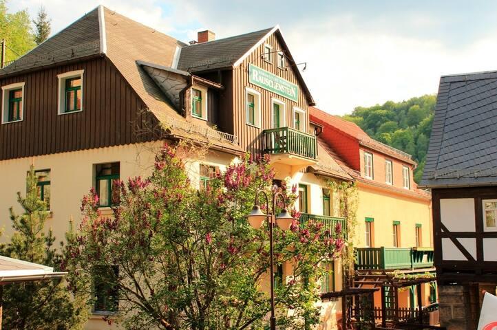 Ferienwohnung/App. für 20 Gäste mit 106m² in Bad Schandau (38481)