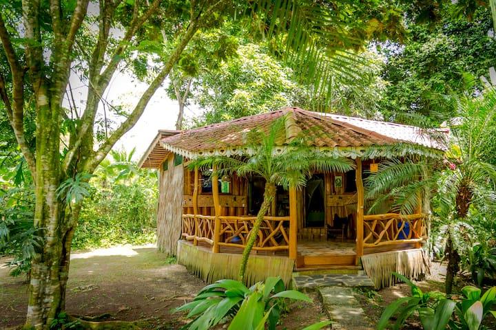 2 Bedroom Bungalow at Hotel La Costa de Papito