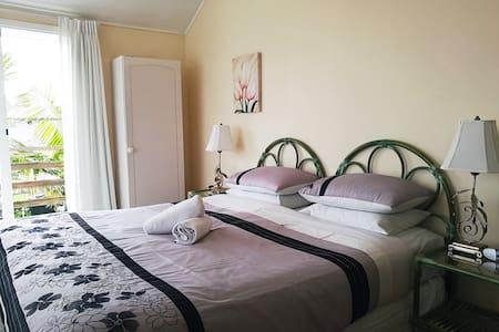 Charming King room near Karangahape Road - Auckland - Bed & Breakfast