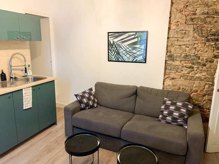 LM- Appartement AXOA Bayonne center