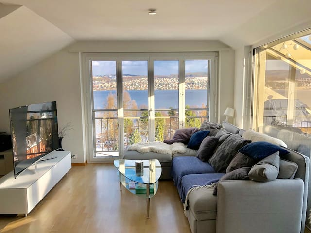 Lake & Mountain View Studio Apartment in Zürich