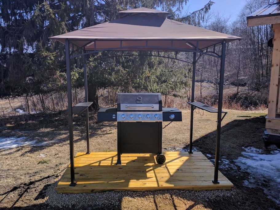 Covered gas grill