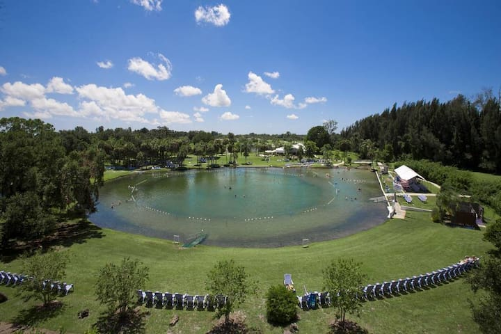 Come Soak In The Waters At Warm Mineral Springs 3