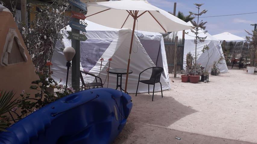 domo glamping 6  , 2 camas ,playa loreto , Caldera