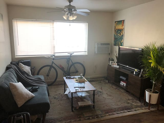 Sunny and Cozy One Bedroom in Quiet Complex