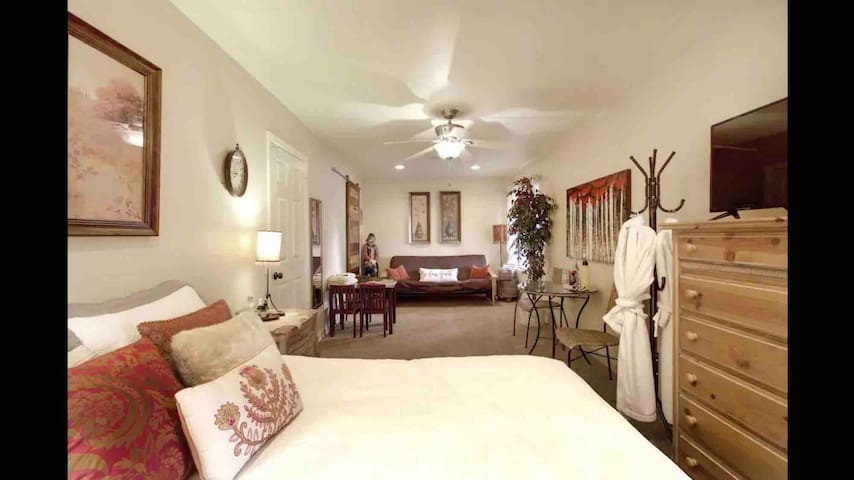 Large Guest suite with one or two beds