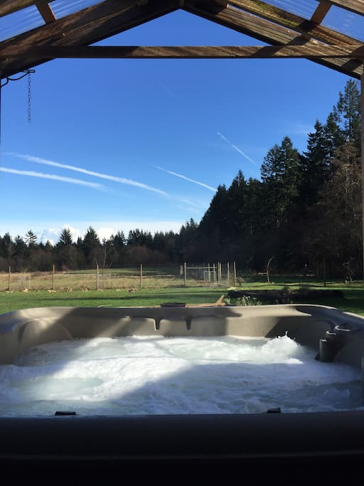 Hot tub overlooking back pasture