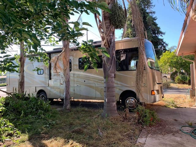 Clean and Cozy 33ft Class A RV (Stationary Rental)