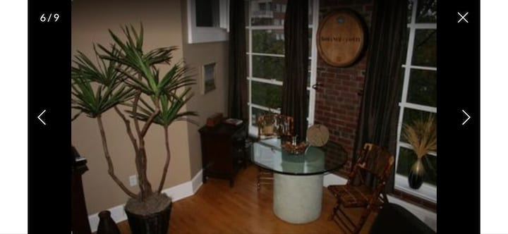 Very Special Downtown Asheville Loft