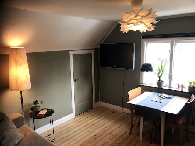 Comfy studio apartment, walking distance to city.
