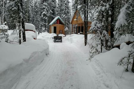 Cozy, Off Grid Cabin In The Woods. - Houston - Sommerhus/hytte
