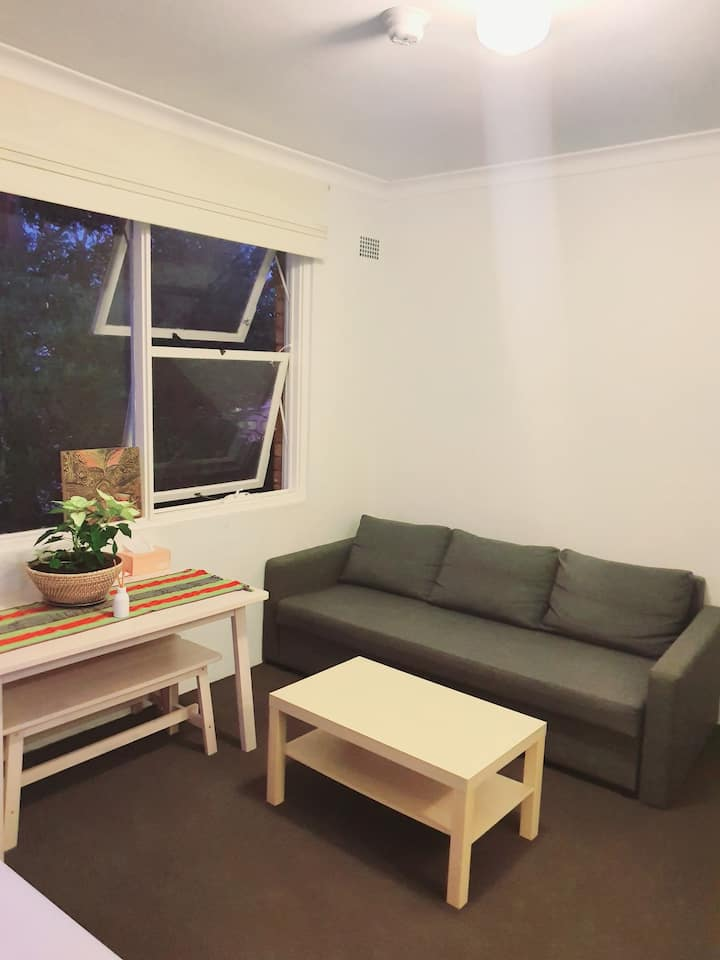 Sofa for 2 in Camperdown near Newtown station