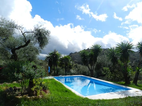 Cottage in olive grove with private pool