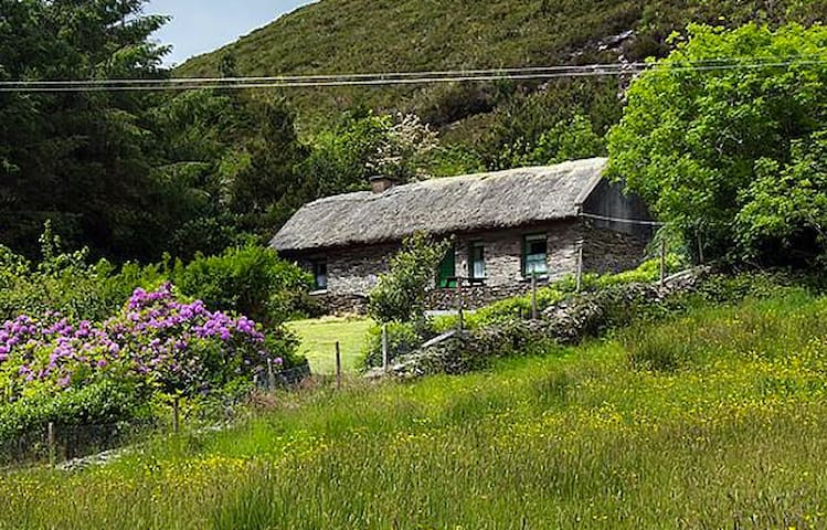 Beautiful Lake Side Thatched Cottage, 400 yrs old. - Killorglin - Chalet