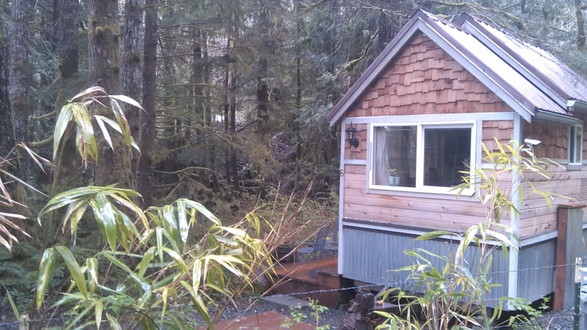 Discovery trail tiny home - Port Angeles - Hus