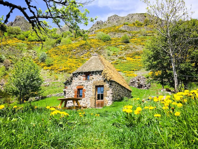 Thatched cottage surrounded by nature
