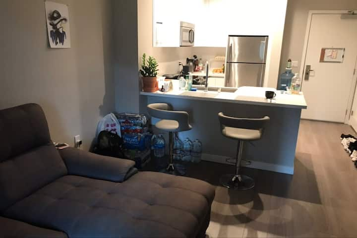One Bedroom apartment in the center of Glendale
